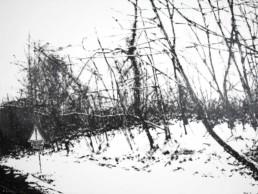 Judith Marin Arbres (bandes rugueuses) peinture acrylique sur toile en noir et blanc paysage enneigé