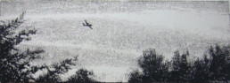 Judith Marin Canadair peinture acrylique sur toile noir et blanc canadair