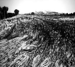 Judith Marin Les Blés peinture acrylique sur toile paysage noir et blanc