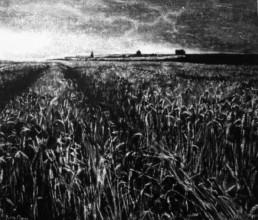 Judith Marin Cimetière peinture vinylique sur toile et pigments en noir et blanc