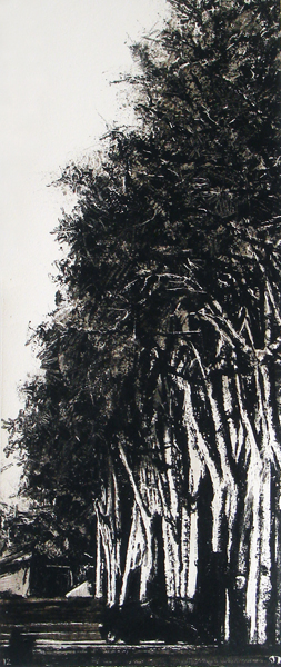 Judith Marin Platanes peinture vinylique et pigments noir et blanc