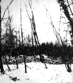 Judith Marin Hiver peinture acrylique noir et blanc sur toile paysage enneigé