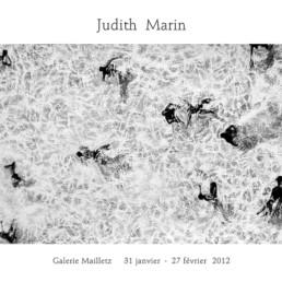 Judith Marin Galerie Mailletz Paris